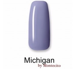Vernis Permanent MICHIGAN